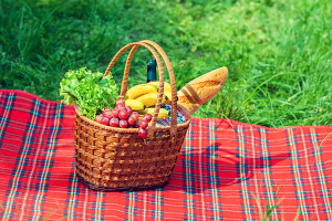 Make the Picnic, During the Picnic